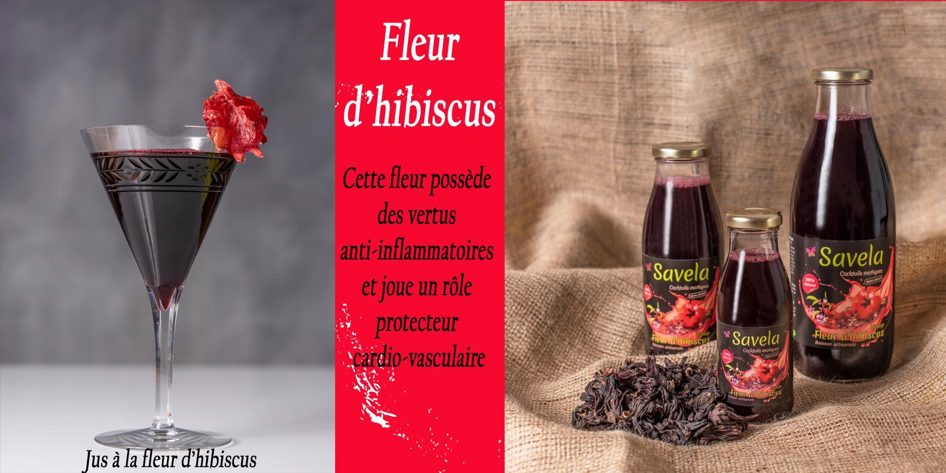 Slider hibiscus vv1 clq2 copie